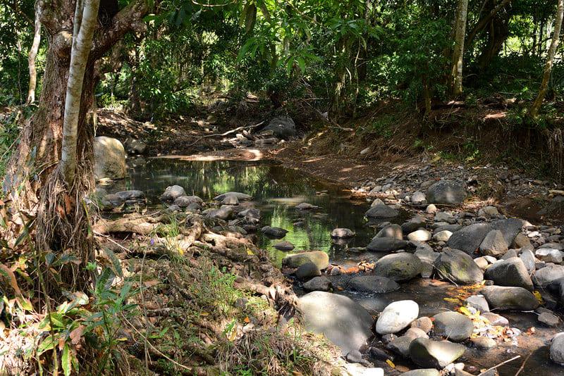 Villa Bain Petite Riviere Sud Martinique Riviere Salee