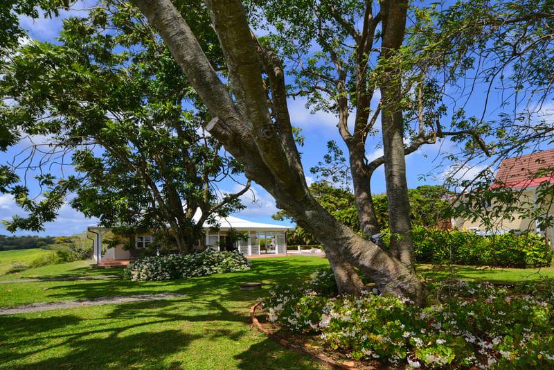 Habitation Mont Vert Jardin Villas