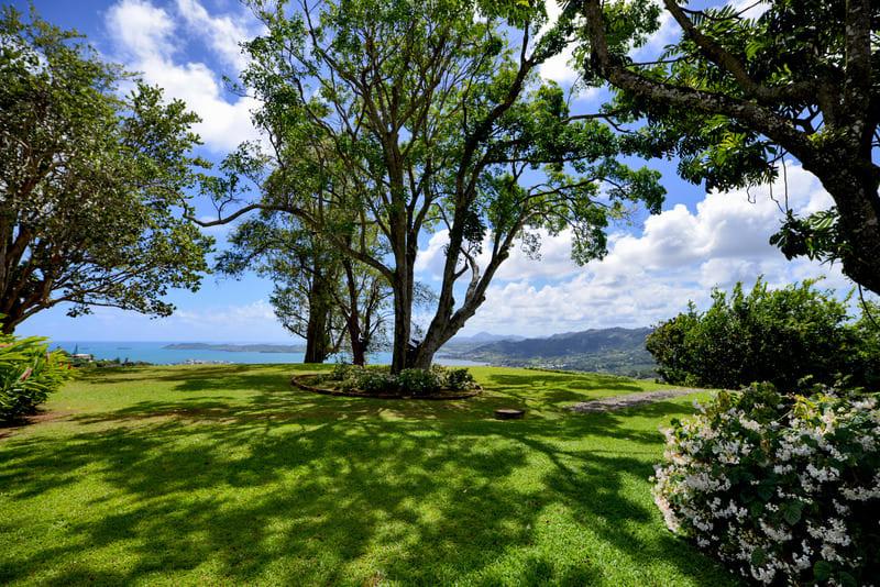 Habitation Mont Vert Jardin Vue Mer