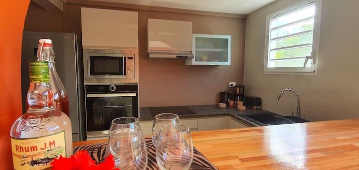 Location Appartement Belle Anse Trois Ilets9