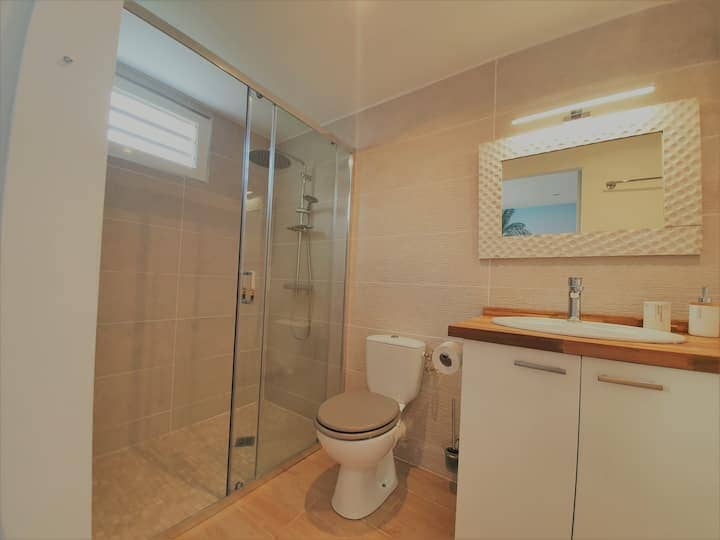 Location Appartement Suite Coco Schoelcher Martinique03