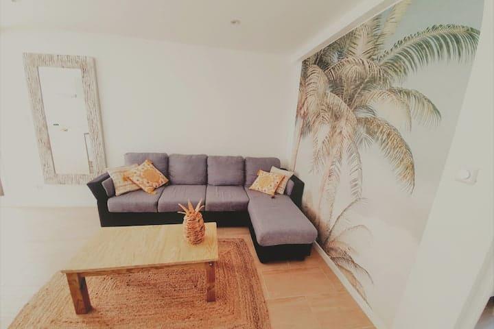 Location Appartement Suite Coco Schoelcher Martinique07