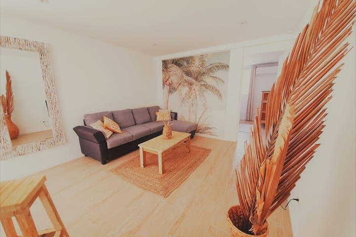 Location Appartement Suite Coco Schoelcher Martinique08