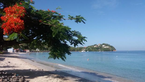 Location Appartement Papaye Trois Ilets Martinique16