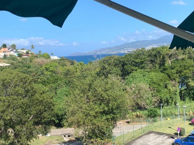 Location Appartement Papaye Trois Ilets Martinique18