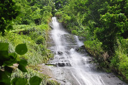cascades martinique