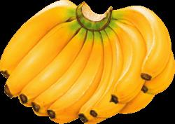 musée de la banane
