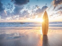 ecole surf martinique