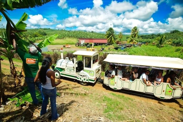 habitation belfort train
