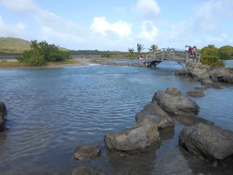 pont savane des pétrifications