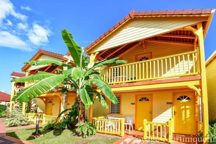 Bambou Martinique (3)