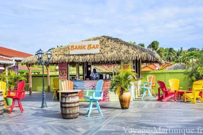 Bambou Martinique (4)