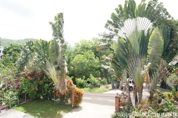 Residence Le Moringa (2)