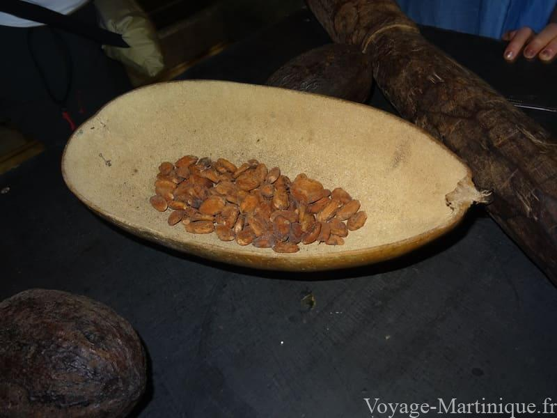 atelier cacao martinique