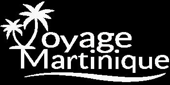 Vm Logo Blanc