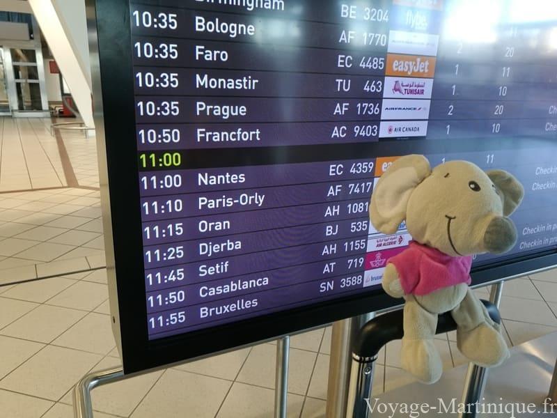 Panneau Aeroport Lyon Martinique