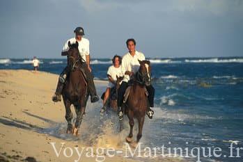 Randonnée Cheval Martinique