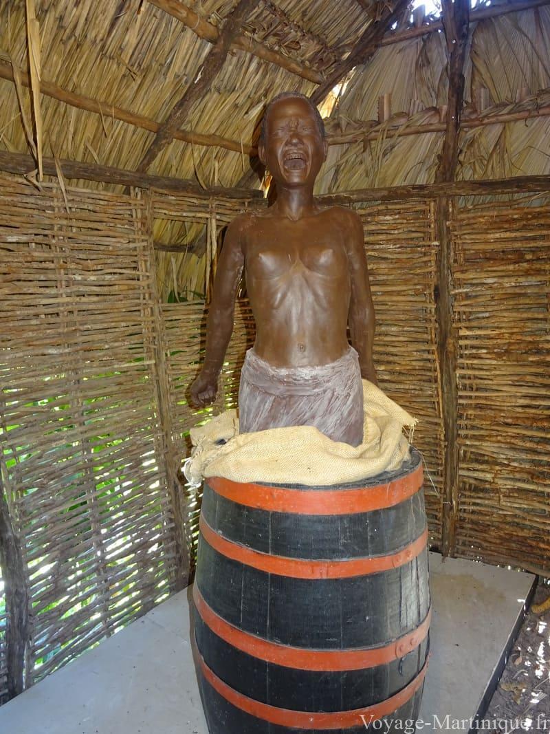 Savane Des Esclaves (5)